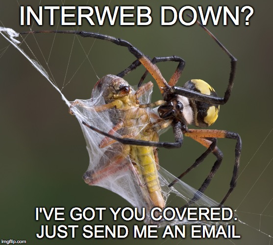 Yes, I am a Cox Spider
